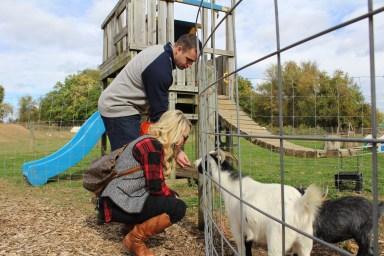 paulus_a-and-a-feeding-animals