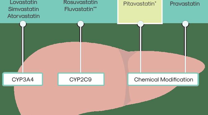 Is Pitavastatin (Livalo) A Better Statin For You?