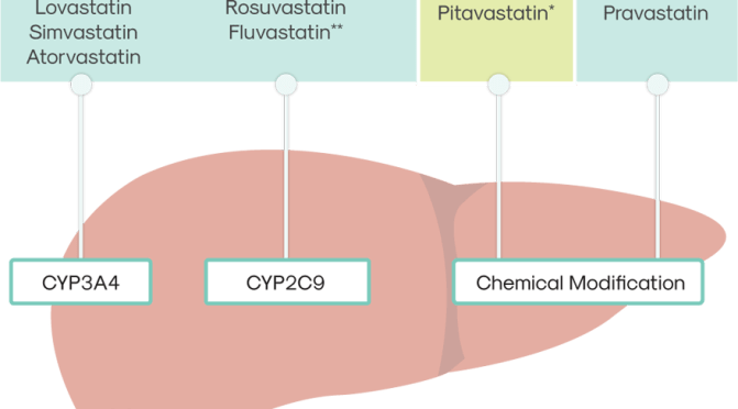 Is Pitavastatin (Livalo) A Better Statin For You?