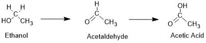 alcoholoxidation