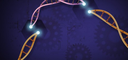 CRISPR gene editing engineering therapy