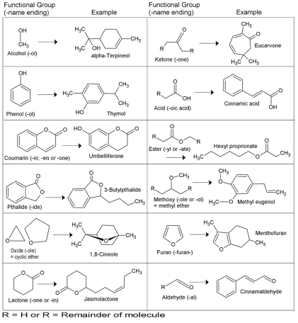 list compounds functional groups essential oils