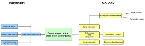 diagram drug delivery system for blood brain barrier chemistry biology