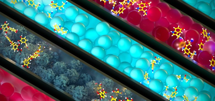 chromatography columns resins art