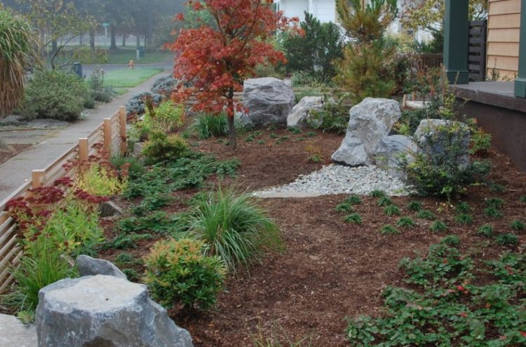 Make Your Backyard More Appealing with Drought Tolerant Landscaping Design 2