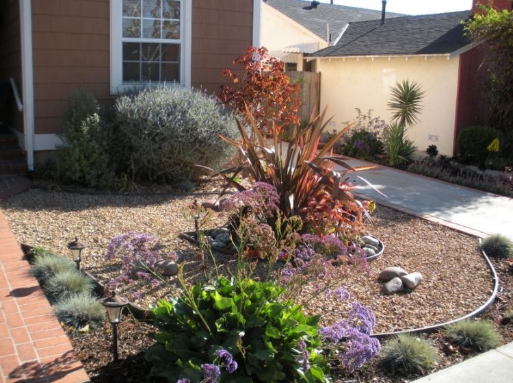 Make Your Backyard More Appealing with Drought Tolerant Landscaping Design 8