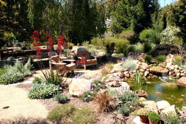Make Your Backyard More Appealing with Drought Tolerant Landscaping Design 6