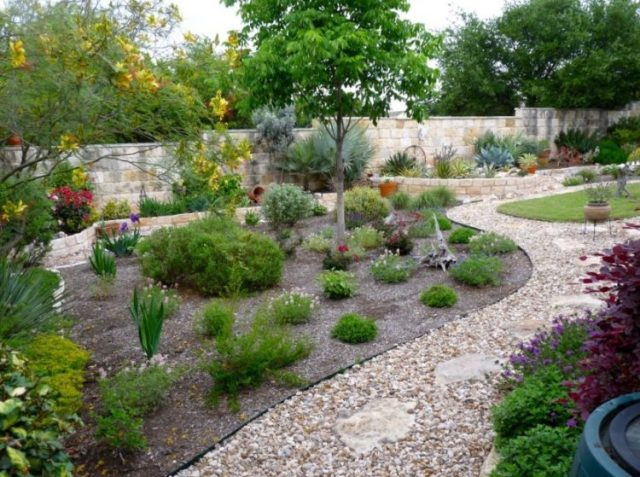 Make Your Backyard More Appealing with Drought Tolerant Landscaping Design 5