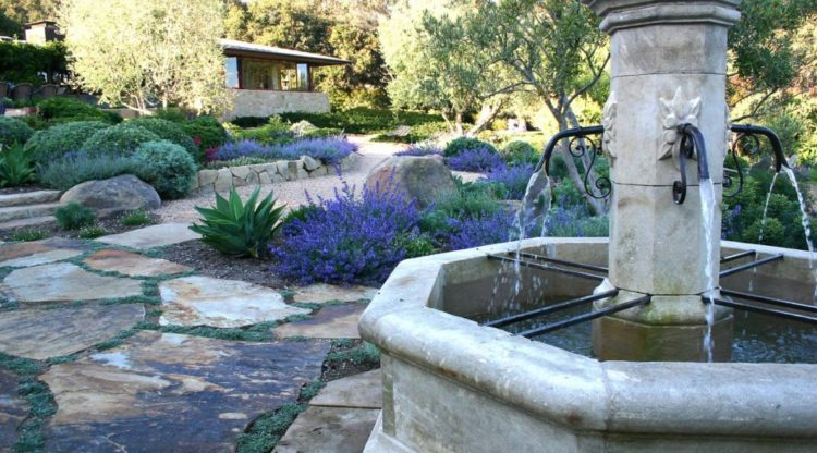Make Your Backyard More Appealing with Drought Tolerant Landscaping Design 1