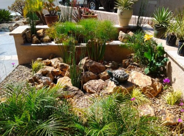 Make Your Backyard More Appealing with Drought Tolerant Landscaping Design 9