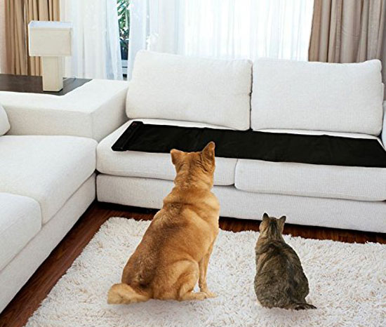 Cat Proof Couch And Sofa Protectors October The Sleep Stus