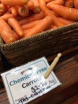 20170602 Tassievore 06 Eumarrah Carrots