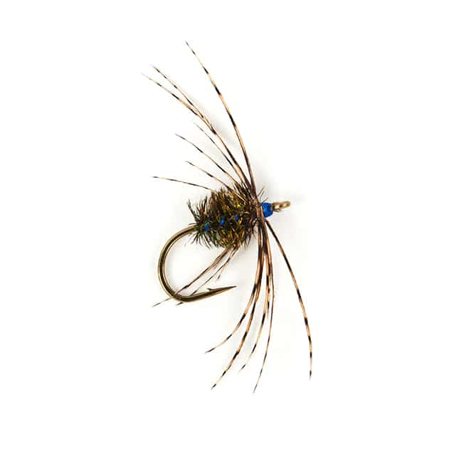 Sagars Fancy - The Lost Flies of the Yorkshire Dales