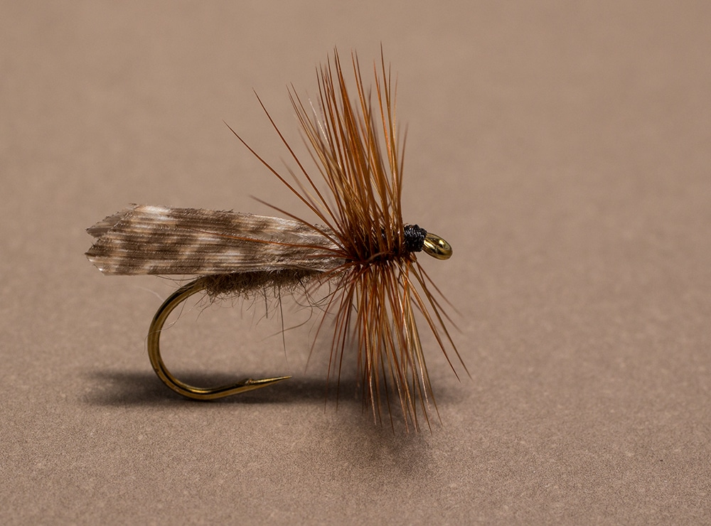 Sedge Dry Fly the Kings River Caddis
