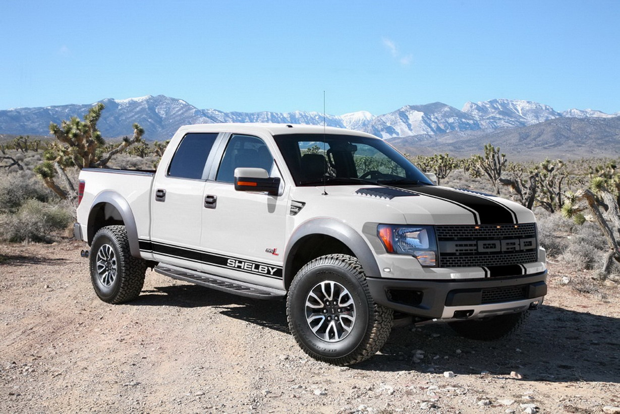 Shelfy-Ford-SVT-Raptor-11[2]