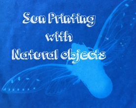 <h5>sun prints of natural objects</h5><p>using sun sensitive paper</p>