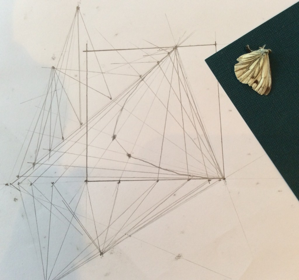 projective geometry learnt from geometry books