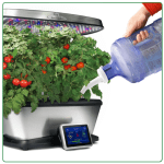 smart garden, no soil, Aerogarden