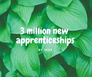 Apprenticeship schemes are increasing
