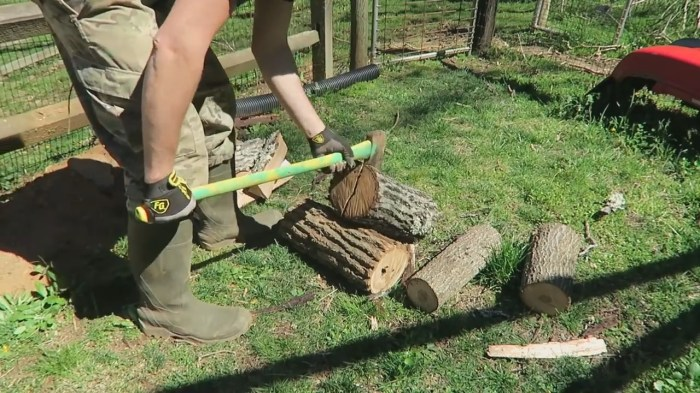 Is Elm Good Firewood