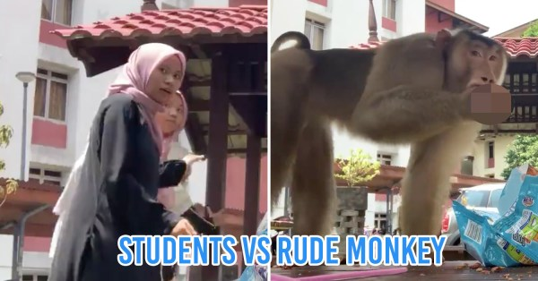 M'sian Students Photobombed By Monkey, Twitter Applauds Them As They Try To Save Their Keropok
