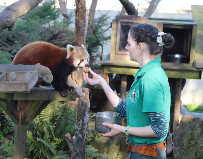 Zookeepers In England Volunteer To Look After Animals During Their 14-Day Isolation