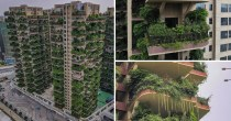 "Chinese Residents Forced To Move Out Of ""Dream"" Forest Apartment Thanks To Mosquito Swarms As Neighbours"