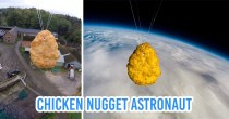 A Single Chicken Nugget Has Been Sent To Space & It's The Best News Of 2020