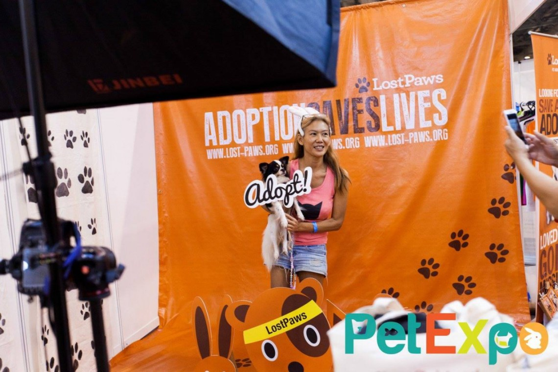 Yappy Global Pets Race
