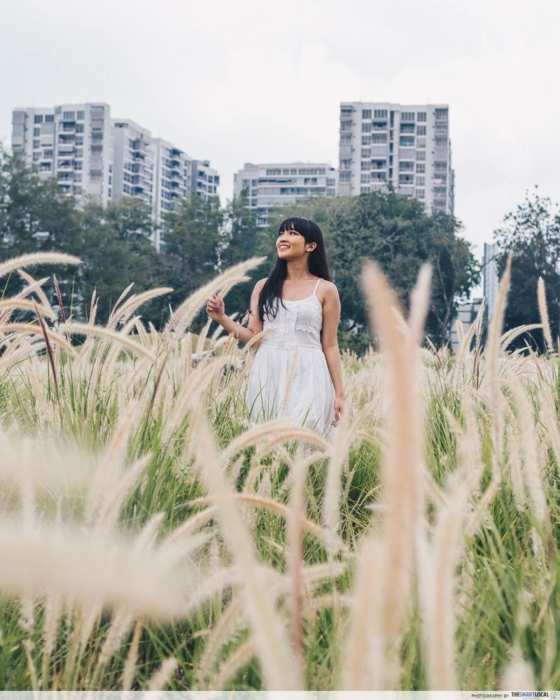Grasslands Lakeside Garden lalang