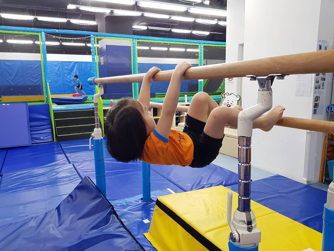 beary fun gym