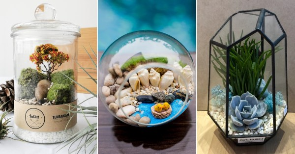 9 Places To Buy Cheap Terrariums In Singapore From Just $14.80