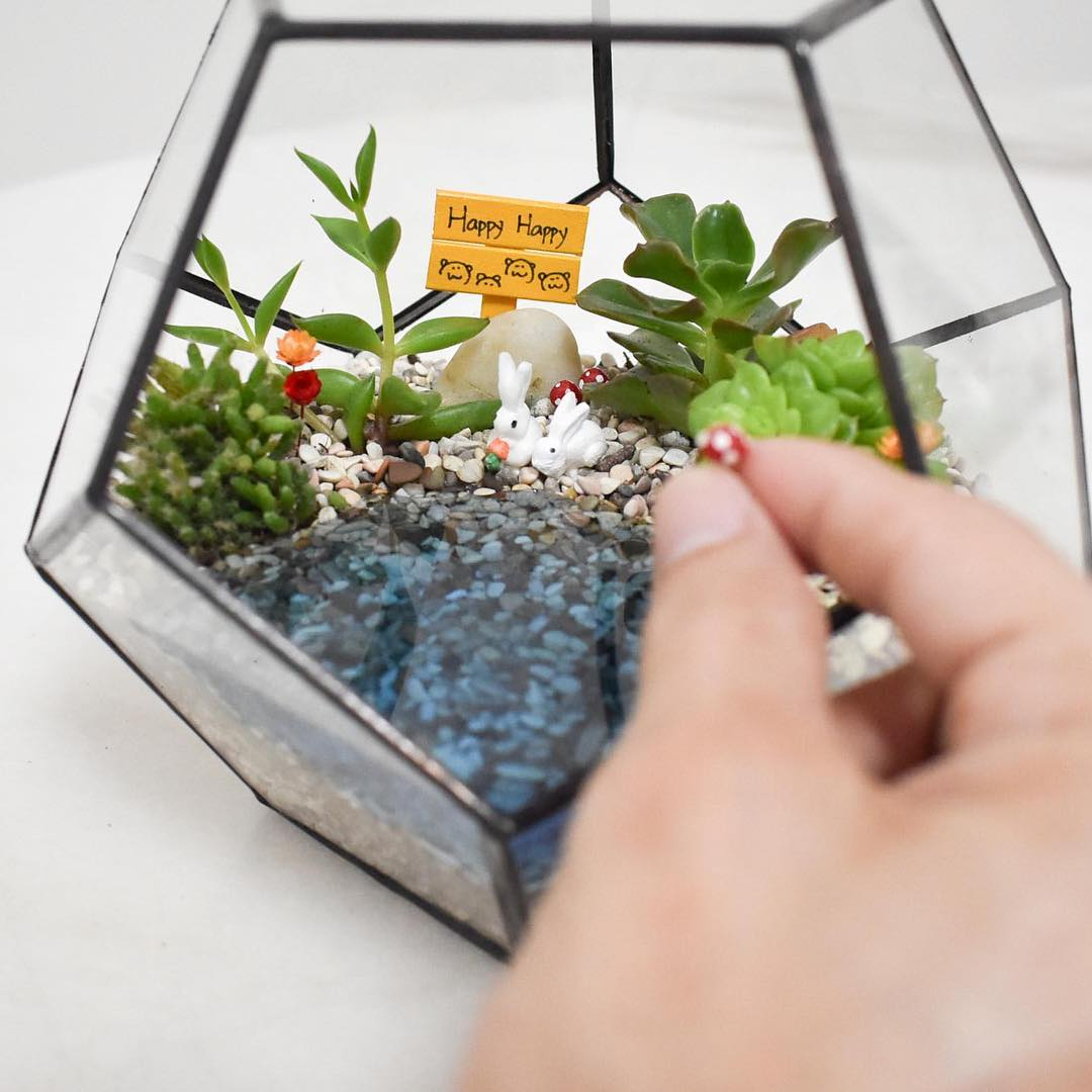 Gifts for friends - DIY terrarium