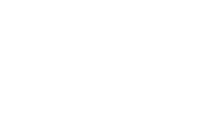 The Smithson Group Business Consulting