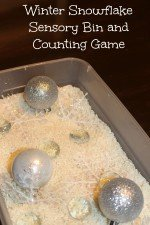 Find the Snowflake Winter Counting Sensory Bin