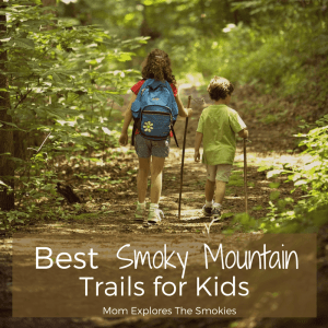 15 Best Smoky Mountain Trails for Kids and Families