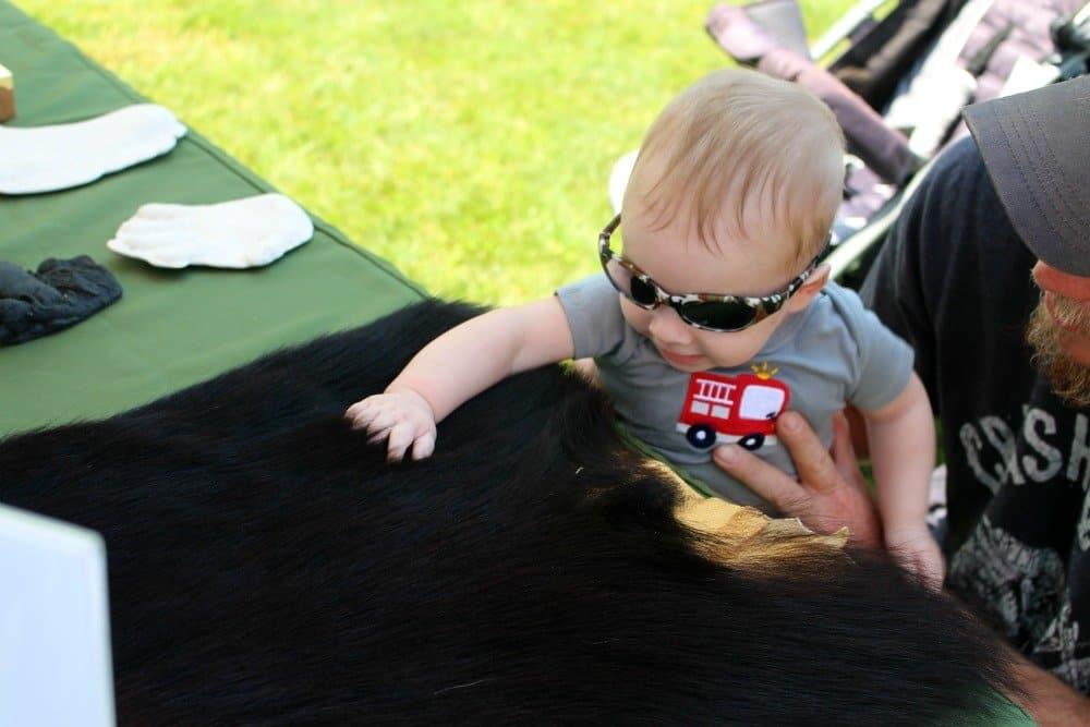 Kid Friendly Smokies: Townsend, TN Spring Festival, Mom Explores The Smokies