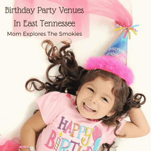 Birthday Party Venues in East Tennessee, Mom Explores The Smokies