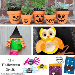 25 + Unique and Fantastic Halloween Crafts, Mom Explores The Smokies