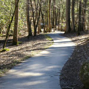 Sugarlands Valley Nature Trail, Mom Explores The Smokies