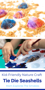 A fun kid-friendly nature craft, tie dye seashell craft, Mom Explores The Smokies