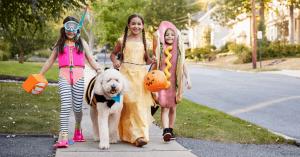 Tri-Cities TN Halloween Events