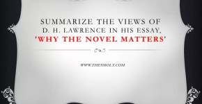 Why the novel matters