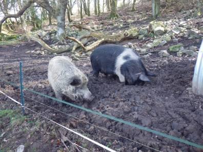 Madge and Dora