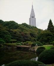 Lovely Japanese gardening