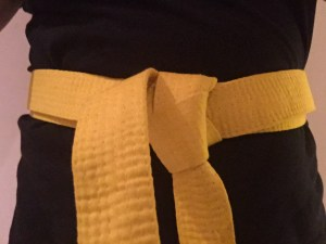 Kickboxing Yellow Belt