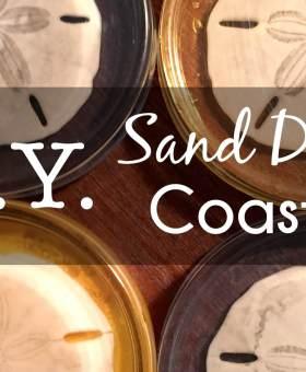 DIY Sand Dollar Resin Coasters — A Grandpa's Seashell Workshop Original