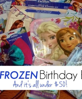 The Best FROZEN Birthday Party Ever! (And it's all under $50!)