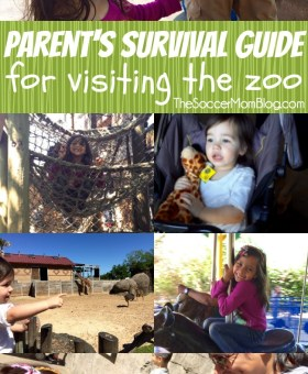 Parent's Survival Guide for Visiting the Zoo with Kids