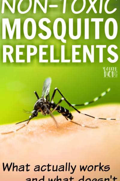 Home Mosquito Trap – Protect Your Family without Poison